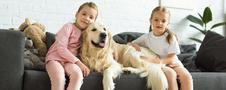 Uśmiechnięte dwie dziewczynki z psem golden retriever na kanapie
