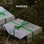 mikołajki_wumex24